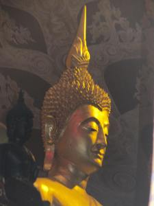 gold buddhas 022
